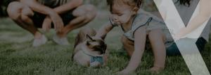 frases diarias para enseñar a tus niños